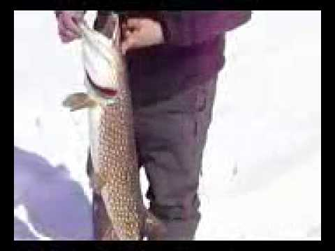 способы рыбалки сетью