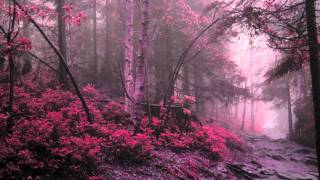 THE LANGUAGE OF THIS SONG IS FINNISH Band: Faun Song: Arcadia Album...
