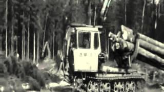Олег Анофриев за кадром В лесу