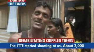 Rehabilitating Crippled Tigers (LTTE) thumbnail