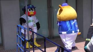 東京ヤクルトスワローズ対横浜DeNAベイスターズ 神宮球場 2017....