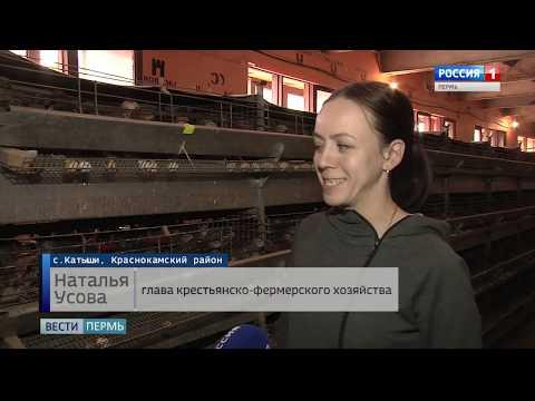 Итоги визита губернатора в Краснокамский городской округ
