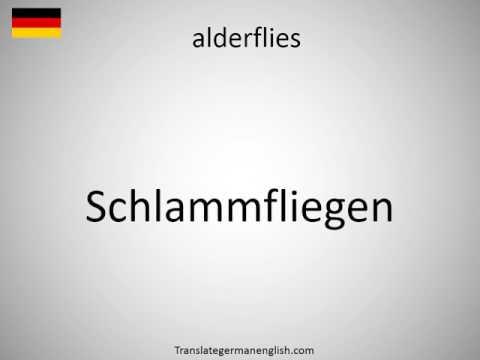 How to say alderflies in German?