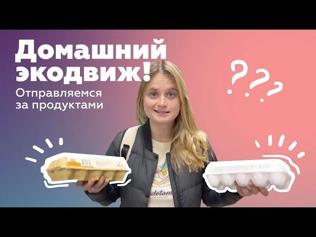 Рубрика «Домашний экодвиж». Выпуск 5.