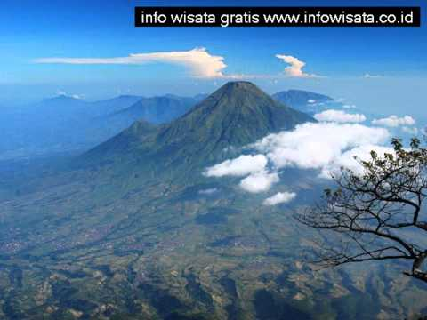 taman-wisata-mekarsari-cileungsi-jawa-barat-indonesia