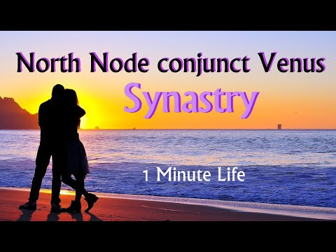 North Node conjunct Venus in Synastry- Astrology  - 1 Minute Life