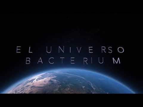 El Universo Bacterium