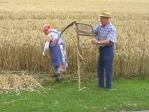 Download Teil 1/3  Getreide - Von der Saat bis zum Brot