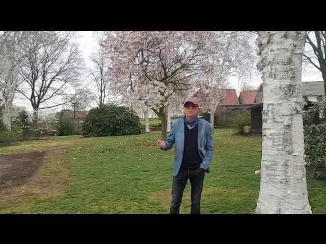 (Film nr. 96)  48e vlog op zondag - Gratis e-boek