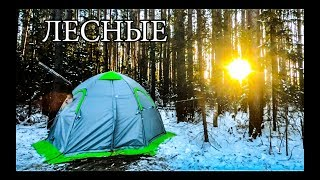 SECRETS OF THE WARM TENT | HEATING TENT | LIFE IN A TENT FROM A TO Z