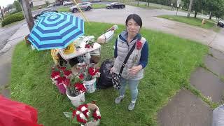 ''Is Everyone Selling Flowers Around Here Japanese?''
