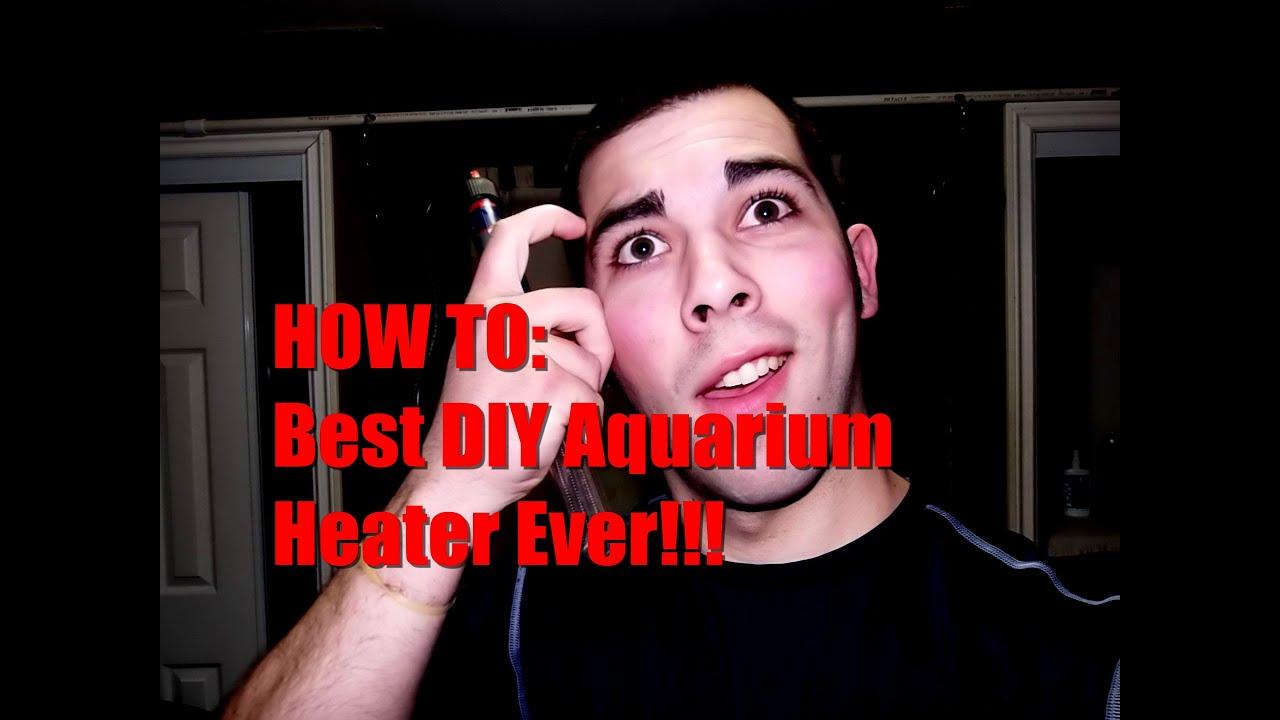 How To Best Diy Aquarium Heater Ever Youtube