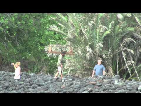 Big Island tsunami hawaii 2011