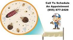 Denver Bed Bug Exterminator |  Denver Bed Bug Removal | Bed Bug Pest Control