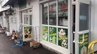 Хрустальный рынок+Обзор улицы Карла Либкнехта 1 для Романа Трушина