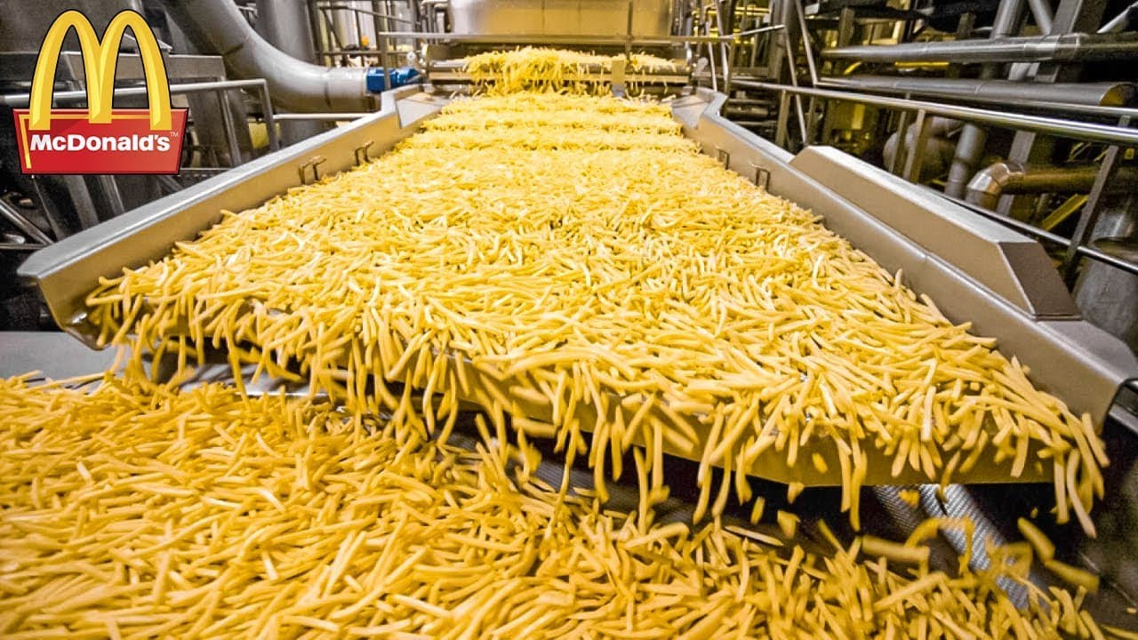 HOW MCDONALD'S FRENCH FRIES ARE MADE. FOOD PRODUCTION
