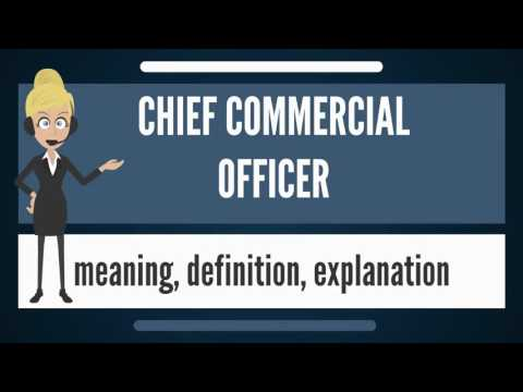 What is CHIEF COMMERCIAL OFFICER? What does CHIEF COMMERCIAL OFFICER mean?