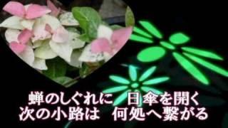 「また君に恋してる」に続く 坂本冬美さんの CM曲 第2弾.