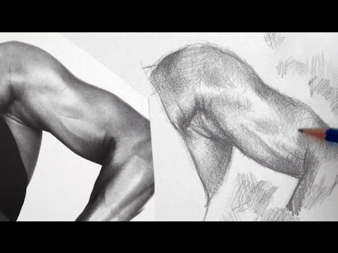 How to Shade a Drawing with Pencil - Shading Techniques