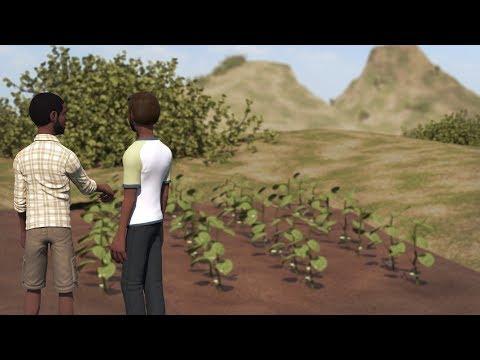 SAWBO - Improved Bean Production: Variant for Uganda
