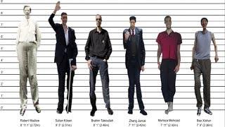 Tallest Man Ever! (2) Robert Wadlow - 9 Foot Tall