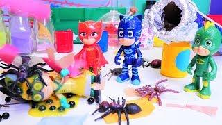 Pijamaskeliler modifiye oyunları. Romeo'nun doğum günü partisini düzenliyoruz