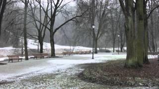 Bernardinų sodo (Sereikiškių parko) sutvarkymas