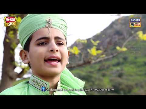 Jo Madinay k Tasawar  Muhammad Shakeel Sandhoo Qadri(Ghousia Studio) New Album 2016-03216501065
