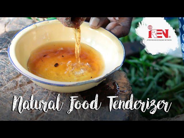 Omusherekha | Luhya Indigenous tenderizer
