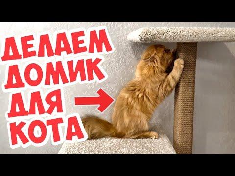 Как сделать домик для кошек самим