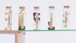 지리산 식물에서 천연 화장품 원료 발굴 본격화 / 연합…