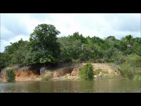 07 Manaus Day 1