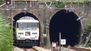 【開通から130年】現役最古の鉄道トンネルを通過する185系踊り子号