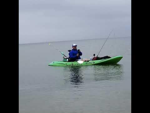 Tx City Kayak