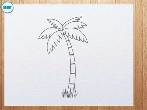 How to draw palm tree for kids