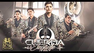 11. Cuerda Elegante - Perro de Cadena [Official Audio]