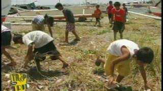 MAMBURAO, OCCIDENTAL MINDORO:  A CLEAN PHILIPPINES CAN BRING FOOD TO YOUR TABLE
