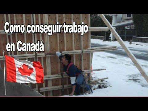 3 Formas de conseguir empleo en Canadá