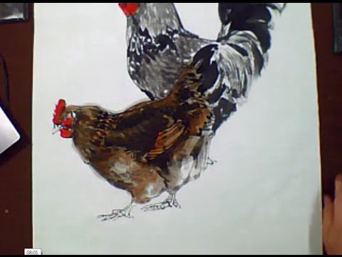 Traditional Chinese Painting : Chicken painting With Chinese Ink & Chinese Watercolor