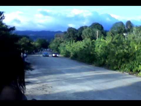 Mandeville race way jamaica
