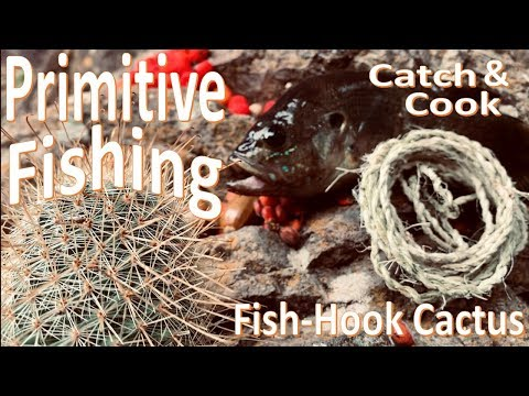 Primitive Survival Fishing Catch & Cook Fish Hook Cactus