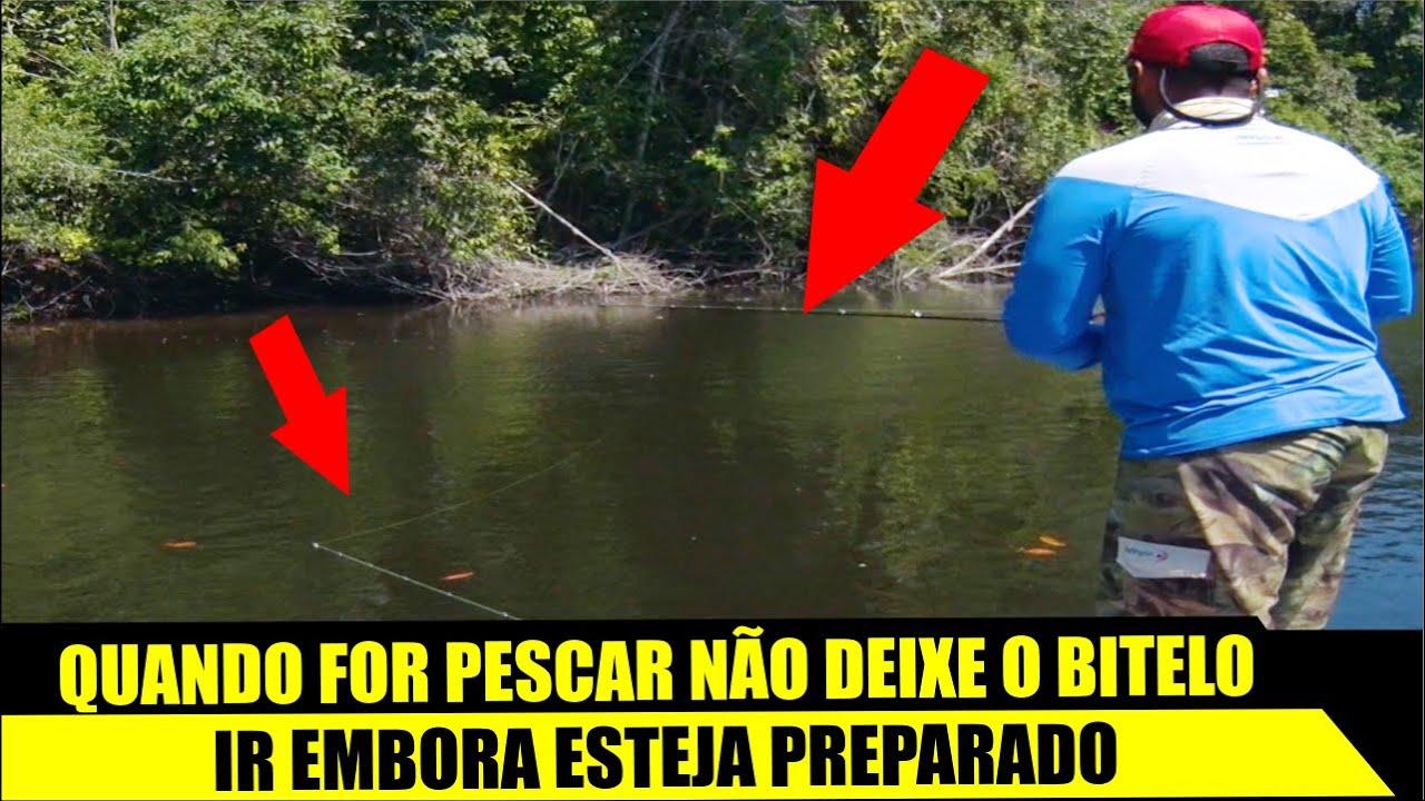 DICA - QUANDO FOR PESCAR NÃO PERCA O BITELO ESTEJA PREPARADO