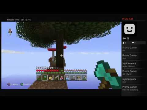 Promz Gamer live stream Minecraft Sky Island episode 2 with cousin