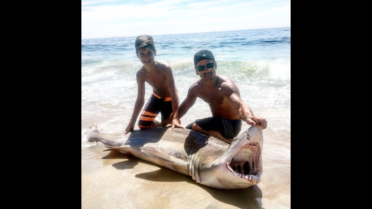 Original 13 Year Old Reels In Shark Off Long Beach Island New Jersey