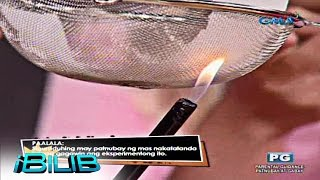 iBilib: Straining fire
