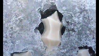 これは一体?凍った池のど真ん中にサークル上に広がるヌメヌメした白い謎物体群(ユタ州)※集合体注意