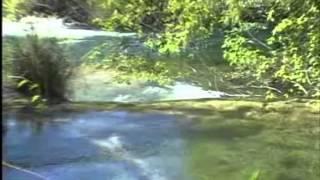 Parque Ecológico Rio Formoso | Bonito - MS