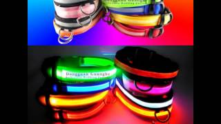 Guanghe Led Dog Collar Big Quantity In Stock ,promotion Item !!!