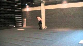 Havanese Dalia & Dog Dance (Happy Feet)