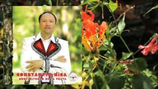 Constantin Nica - Am primit Doamne în viață (Official Audio)